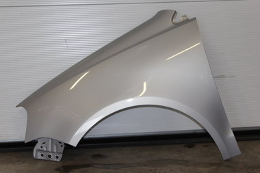 Spatbord  Volkswagen  Polo 9N3 | Satin Silver  LB7Z